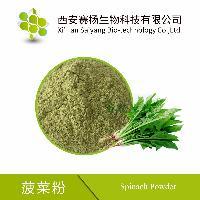 【赛扬供应】优质菠菜汁粉 可直接饮用食用 热风干燥而成现货包邮