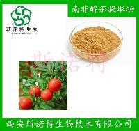 南非醉茄提取物       醉茄内酯 植物提取   斯诺特厂家