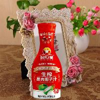 1.25L时代之星花瓶生榨椰子汁-喜庆宴席红瓶