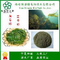 海带膳食纤维粉 90% 植物纤维素 西安斯诺特 全国包邮价