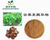 金荞麦提取物 优质原料 厂家信誉保证 1公斤起订