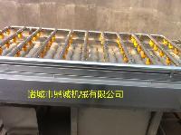 厂家直销喷淋式地黄毛辊清洗机