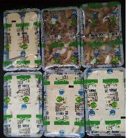 鲜豆腐锁鲜封盒包装机