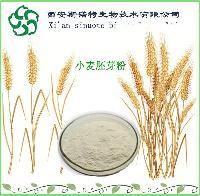 小麦胚芽提取物   斯诺特厂家现货包邮  小麦胚芽粉