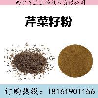 芹菜籽粉 芹菜籽浸膏 芹菜籽提取物