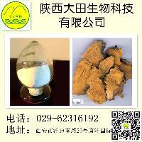 虎杖提取物 白藜芦醇98%  天然 厂家直销