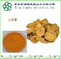 虎杖大黄素25%    饲料级   大黄素    斯诺特生物现货供应