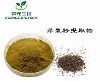 芹菜籽提取物  芹菜子提取物 喷雾干燥技术 优质原料