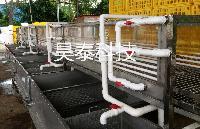 诸城昊泰香葱韭菜叶菜专用清洗机 果蔬清洗机