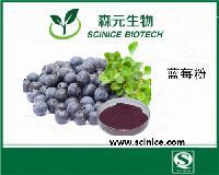 蓝莓粉 蓝莓汁粉 果蔬代餐粉固体饮料原料 现货包邮量大优惠