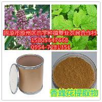 香蜂花提取物 柠檬香蜂草粉  蜜蜂花提取物 香蜂花茶补肾阳功效