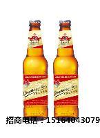 啤酒厂家招商|进口大瓶啤酒加盟