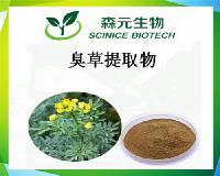 臭草提取物/臭艾提取物 天然植物萃取10:1
