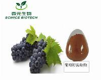 优质葡萄籽提取物 多酚90% 生产厂家 品质保证