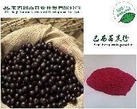 巴西莓果粉