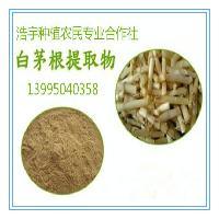 白茅根提取物 白茅根浸膏粉 白茅根速溶粉 白茅根粉 白茅根超微粉