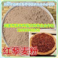 红藜麦 红藜麦粉 红藜麦熟 有机红藜麦粉 固原浩宇种植基地