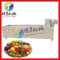直销大型草莓臭氧清洗机 可做超声波水果清洗机