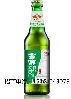 500毫升高档白瓶啤酒招商批发|慕斯威尔酒业