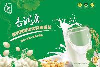 脱毒优化银杏鲜榨豆奶