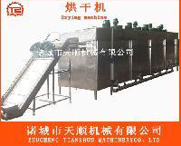 TSHG-100-5多層大型慈姑烘干專用設備