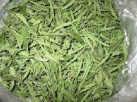 甜叶菊提取物  甜菊糖甙90%