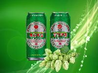330毫升易拉罐啤酒招商 【青岛青轩啤酒】代理