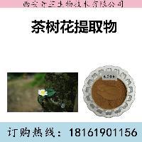 茶树花提取物厂家 茶树花提取物价格