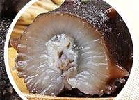 广州市哪里有海参卖的【辽参60头的价钱】