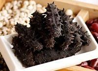 1斤淡干海参有多少只 活海参一斤的价格