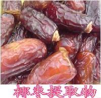 供应椰枣粉 椰枣浓缩粉 椰枣速溶粉 厂家包邮  大量库存