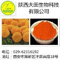 大田生物 万寿菊提取物-叶黄素  5%--98%包邮