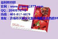 济南汤圆团购哪种礼盒好 益利思红提草莓汤圆受欢迎