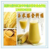 玉米膳食纤维  玉米纤维 玉米面 玉米粉 100目 食品饮料添加剂
