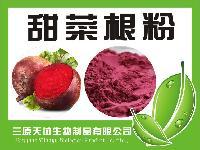 甜菜根粉 纯天然果蔬粉无添加