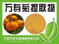 万寿菊提取物  纯天然植物萃取