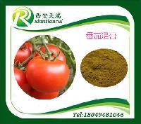 番茄浸膏含量稳定品质优良