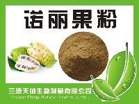 诺丽果粉  纯天然果蔬粉无添加