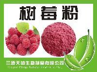 覆盆子粉  纯天然果蔬粉无添加