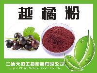 10%蔓越莓提取物  天然蔓越橘花青素