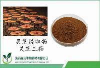 灵芝三萜2% 灵芝提取物 赤芝浓缩粉 高品质原料 工厂热销