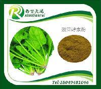 菠菜酵素粉天瑞种植基地天瑞厂家优势产品