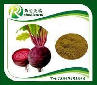 甜菜酵素粉现货供应价格从优