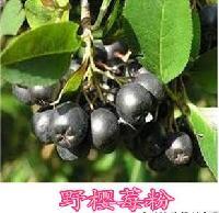 野樱莓果粉 花楸果粉 不老莓粉 野樱莓果汁粉 *速溶 野樱莓粉