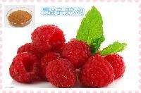 代加工覆盆子提取物 红树莓粉 固体饮料/液体饮料代加工