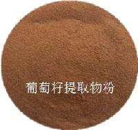 天津唐朝 葡萄籽提取物