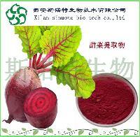 甜菜根粉    甜菜膳食纤维粉     斯诺特生物十年工厂
