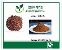 厂家直销 葡萄籽提取物 原花青素95% 现货包邮 量大优惠