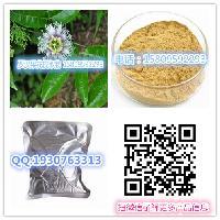 罗汉果花提取物 罗汉果花速溶粉固体饮料 凉茶原料 宁夏浩宇