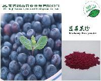 蓝莓粉 水溶 现货供应